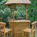 100 Island Bamboo Bar Set
