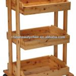 beauty salon trolley MY-059-MY-059